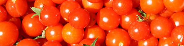 cherry tomatoes header 2