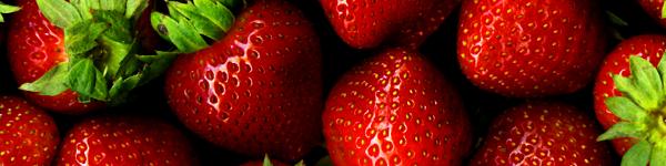 strawberries-header