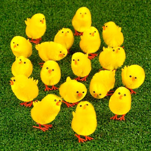 EASTER CHICKS 18 PACK