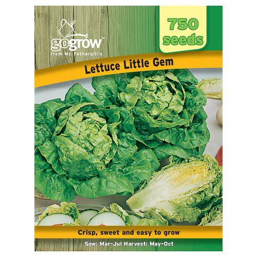 Mr Fothergills Lettuce Little Gem