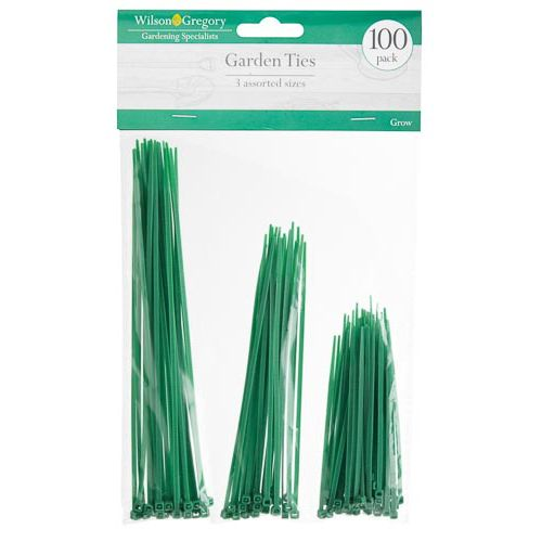 100 PACK CABLE TIES