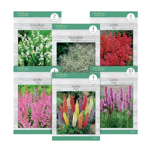 ASSORTED PERENNIAL BULBS