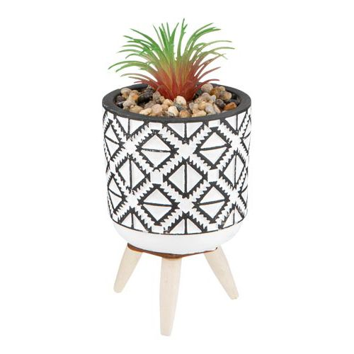 Single Succulent In Ceramic Pot On Stand