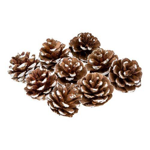 Craft Pinecones
