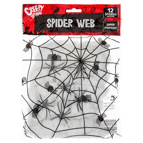 Spider Web With 12 Spiders