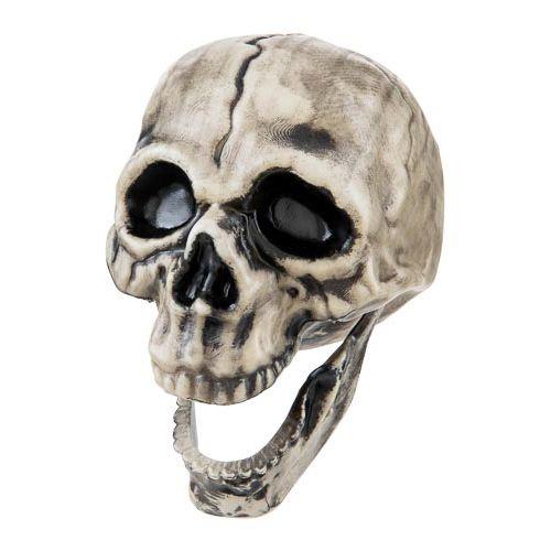 Moving Jaw Skull