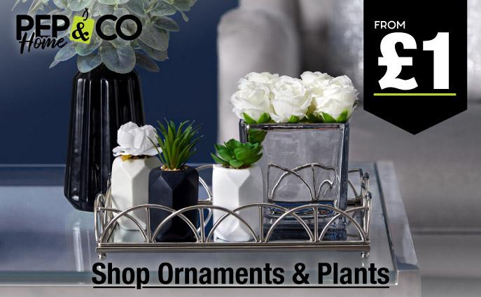 Shop Ornaments & Plants